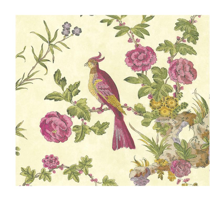 Papier peint Darwin-Provence