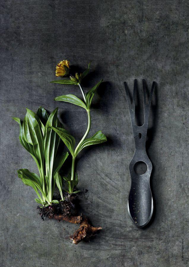 Garden Fetish - Lucane