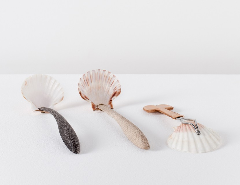 Scallop spoon set