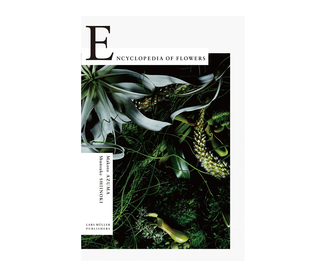 Encyclopédie des Fleurs