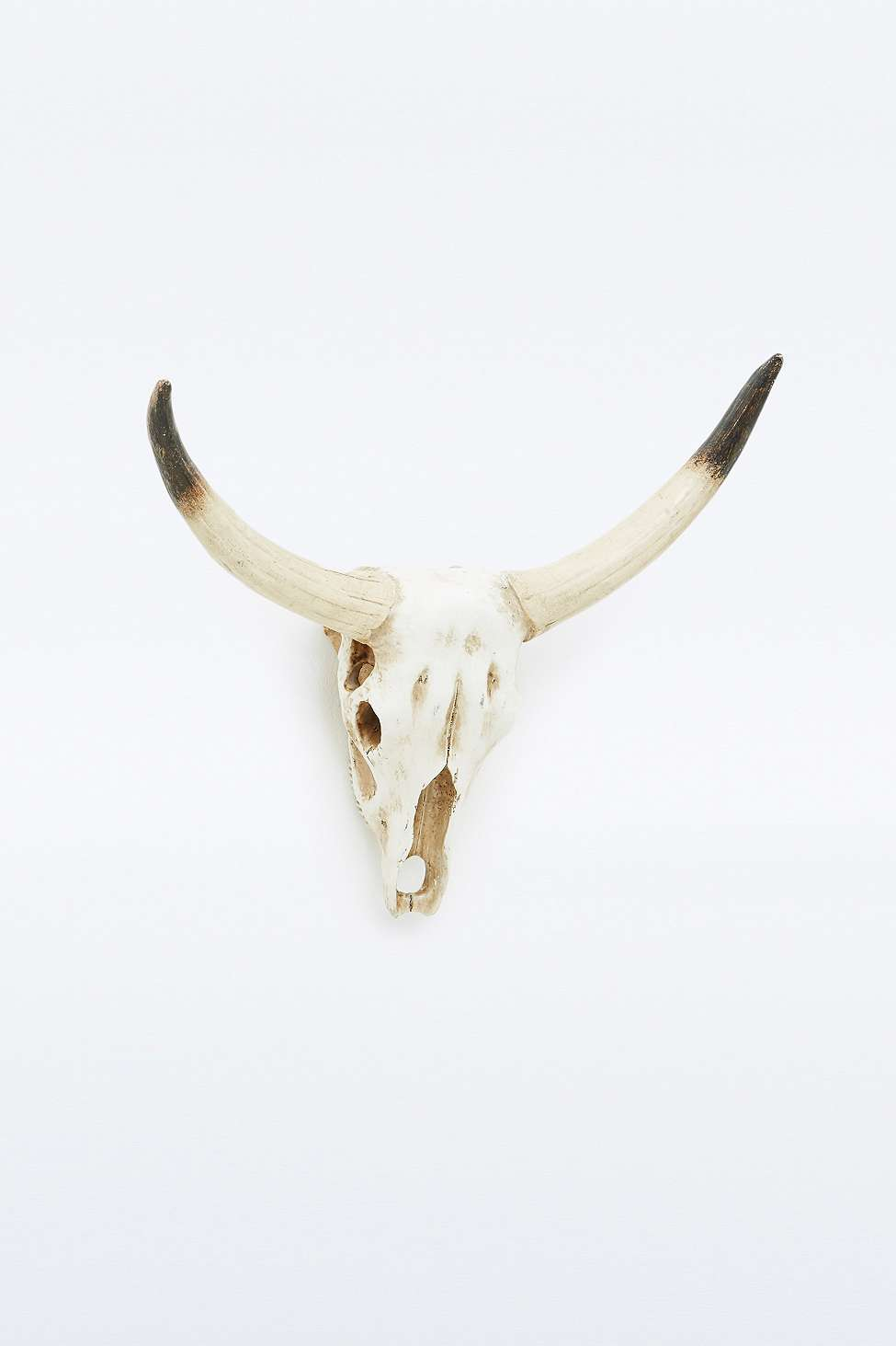 Ornement mural crâne de cerf