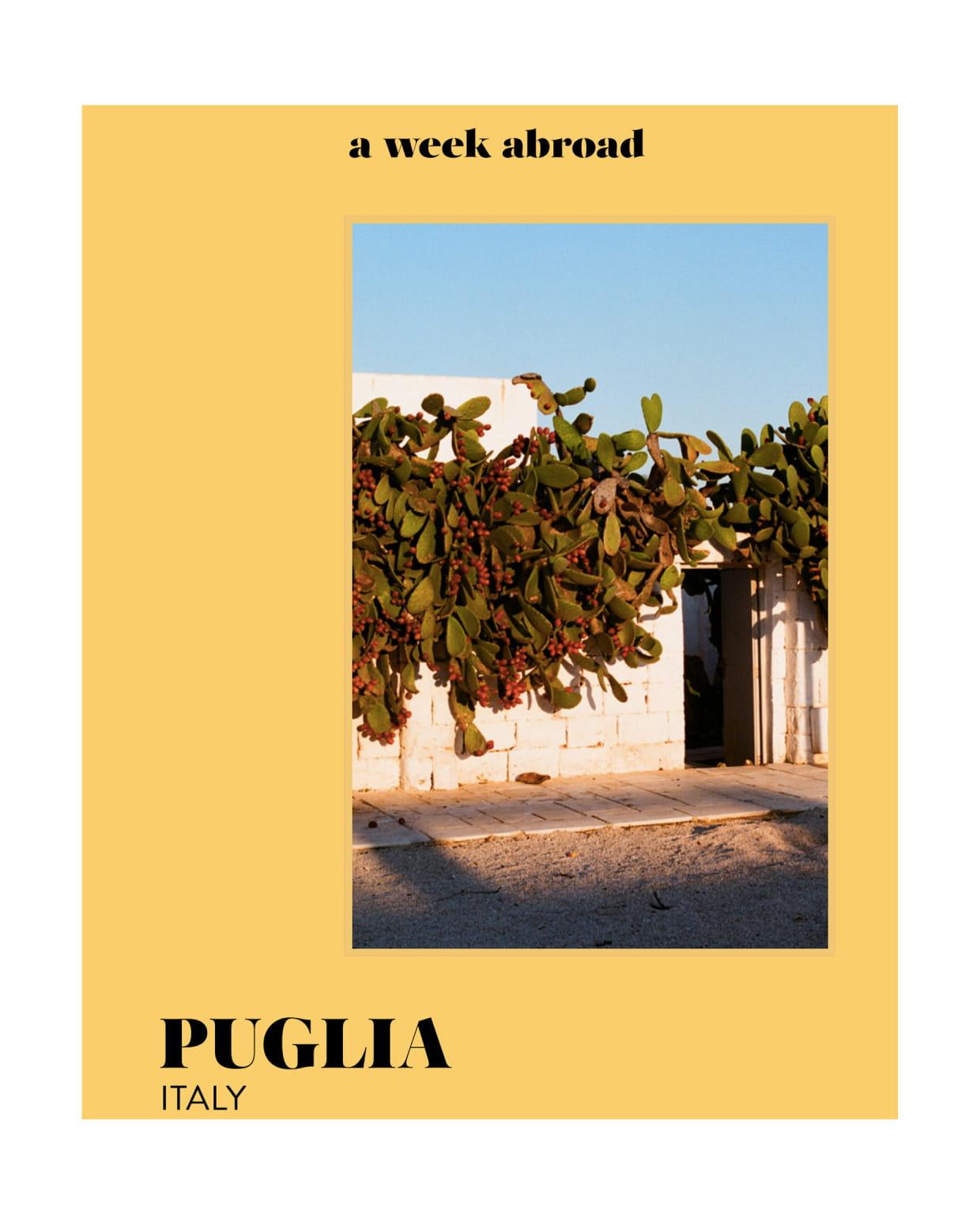 Livre Puglia